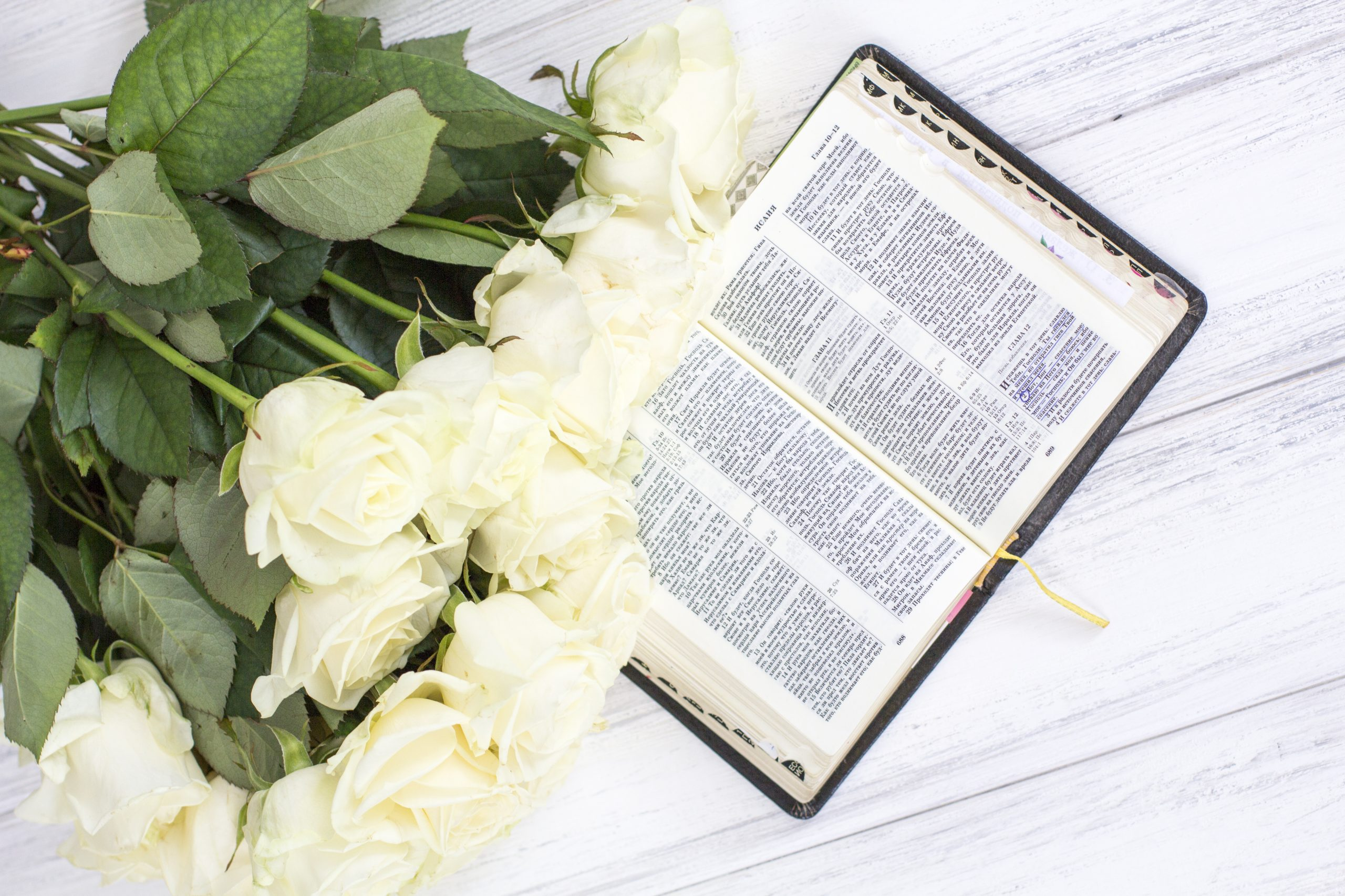 white roses bible white roses bible white wooden background scaled