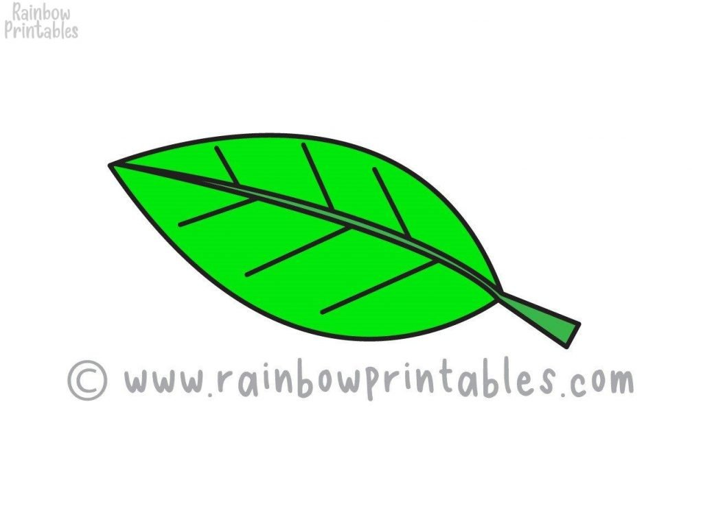 How To Draw a NATURE LEAVES Step by Step for Beginners and Kids | Easy and Simple | Printable Drawing Worksheet