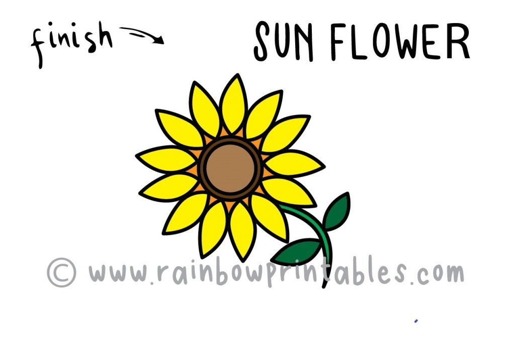 How To Draw a Sunflower Step by Step for Beginners and Kids Final Picture