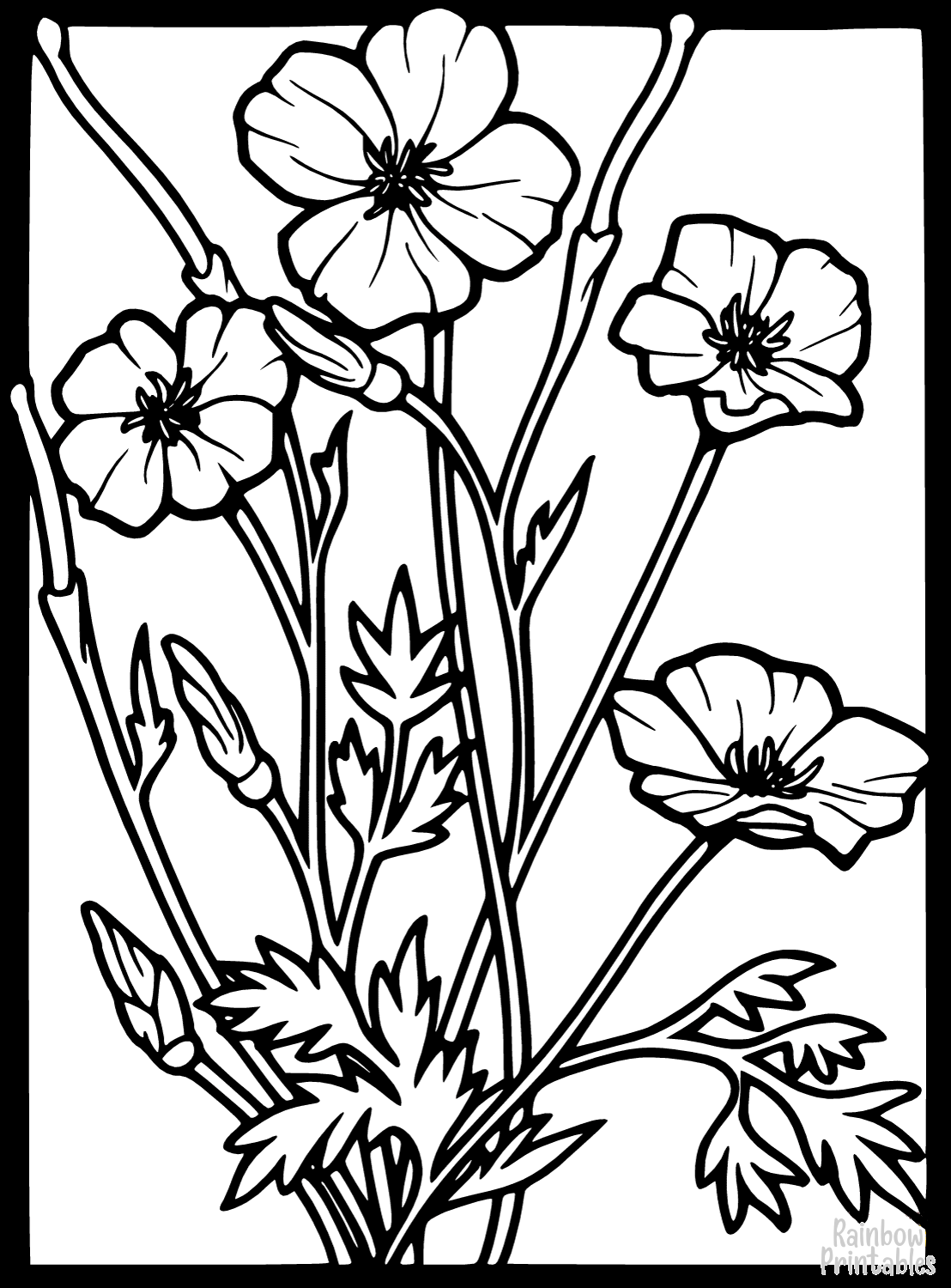 STAINED GLASS POPPY Clipart Coloring Pages for Kids Adults Art Activities Line Art