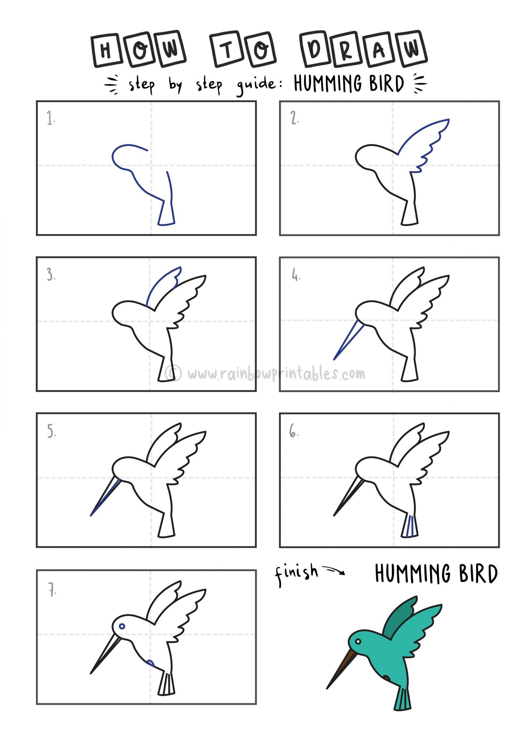How To Draw Tutorials For Kids HUMMINGBIRD YOUNG KIDS EASY DRAWINGS ART GUIDE STEP BY STEP
