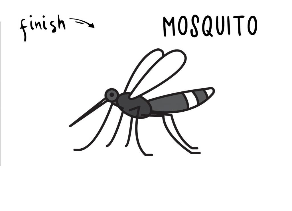 How To Draw Bug Inset Mosquito Step by Step Art Drawing Tutorial for Young Children FINAL