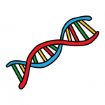 How To DNA (Deoxyribonucleic Acid) For Kids - Step By Step STEM Art Guide