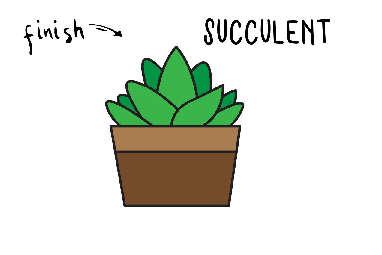 How To Draw a Succulent Plant – Easy Step By Step Drawing Guide