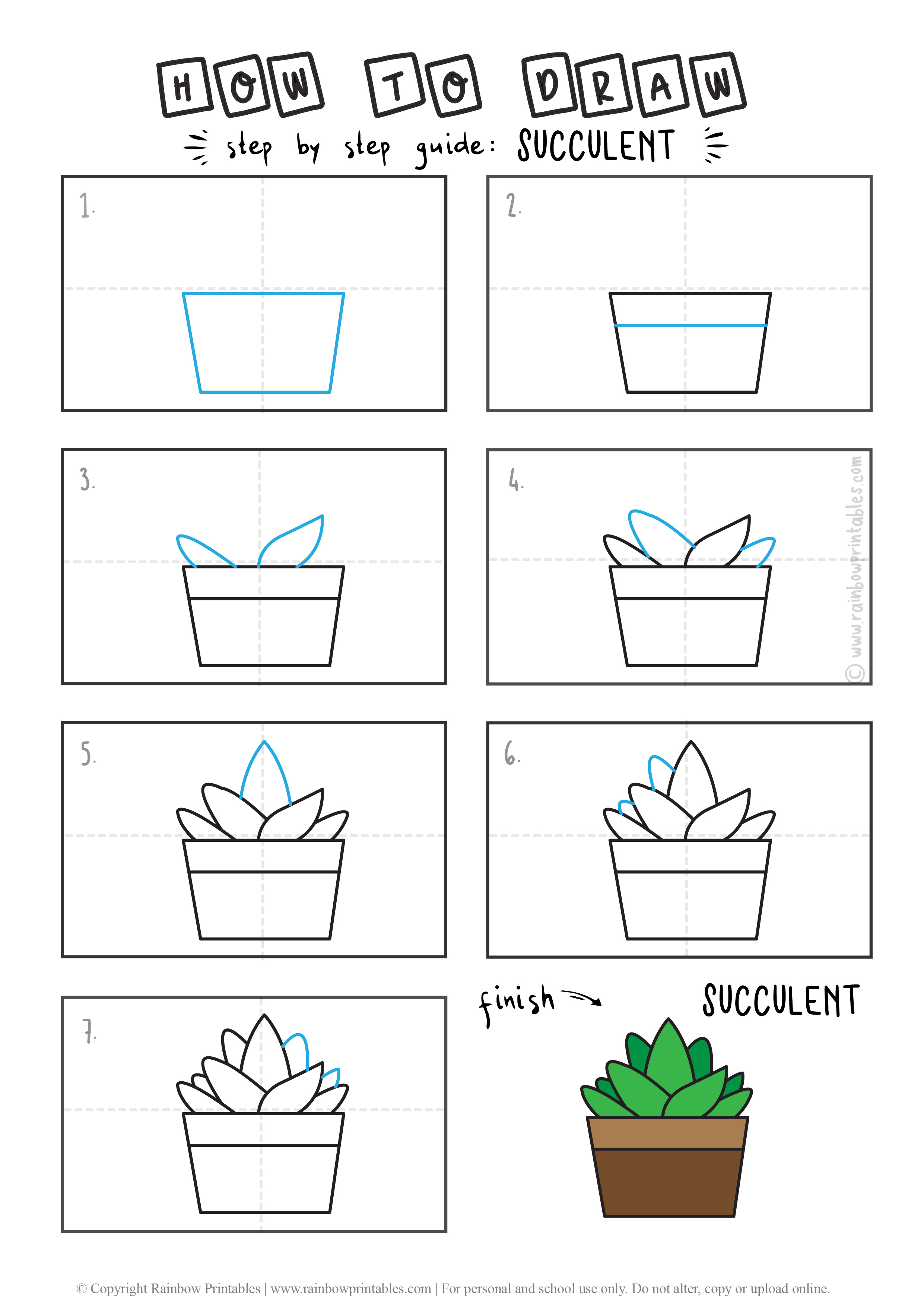 HOW TO DRAW A SUCCULENT PLANT CACTUS FLOWER GUIDE ILLUSTRATION STEP BY STEP EASY SIMPLE FOR KIDS