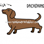 How To Draw a Cute Cartoon Dachshund (Dog) - Easy Step By Step For Kids