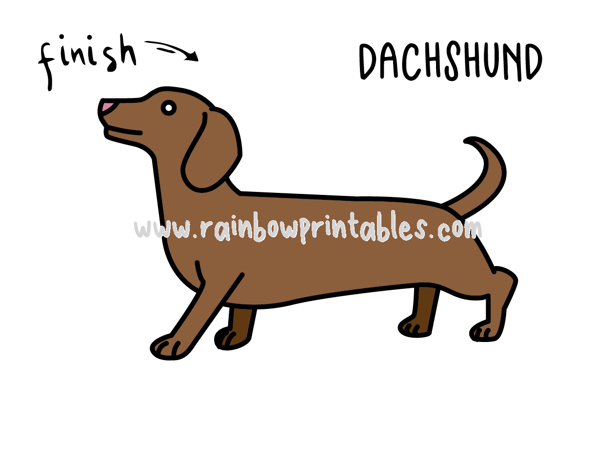 HOW TO DRAW EASY FOR KIDS STEP BY STEP DACHSHUND DOG Final