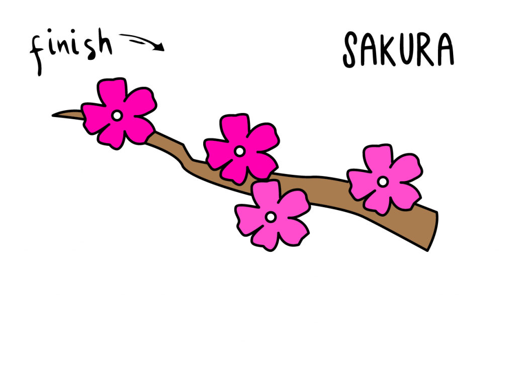 HOW TO DRAW EASY FOR KIDS STEP BY STEP SAKURA FLOWER on BRANCH JAPANESE CHERRYBLOSSOM Final