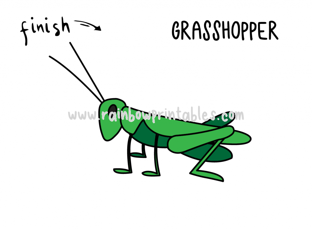HOW TO DRAW GRASSHOPPER INSECT FOR KIDS BUG EASY STEP FINAL