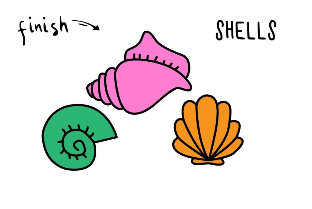 HOW TO DRAW PRETTY SEASHELLS BEACH SHELLS CLAMS CONCH GUIDE ILLUSTRATION STEP BY STEP EASY SIMPLE FOR KIDS final