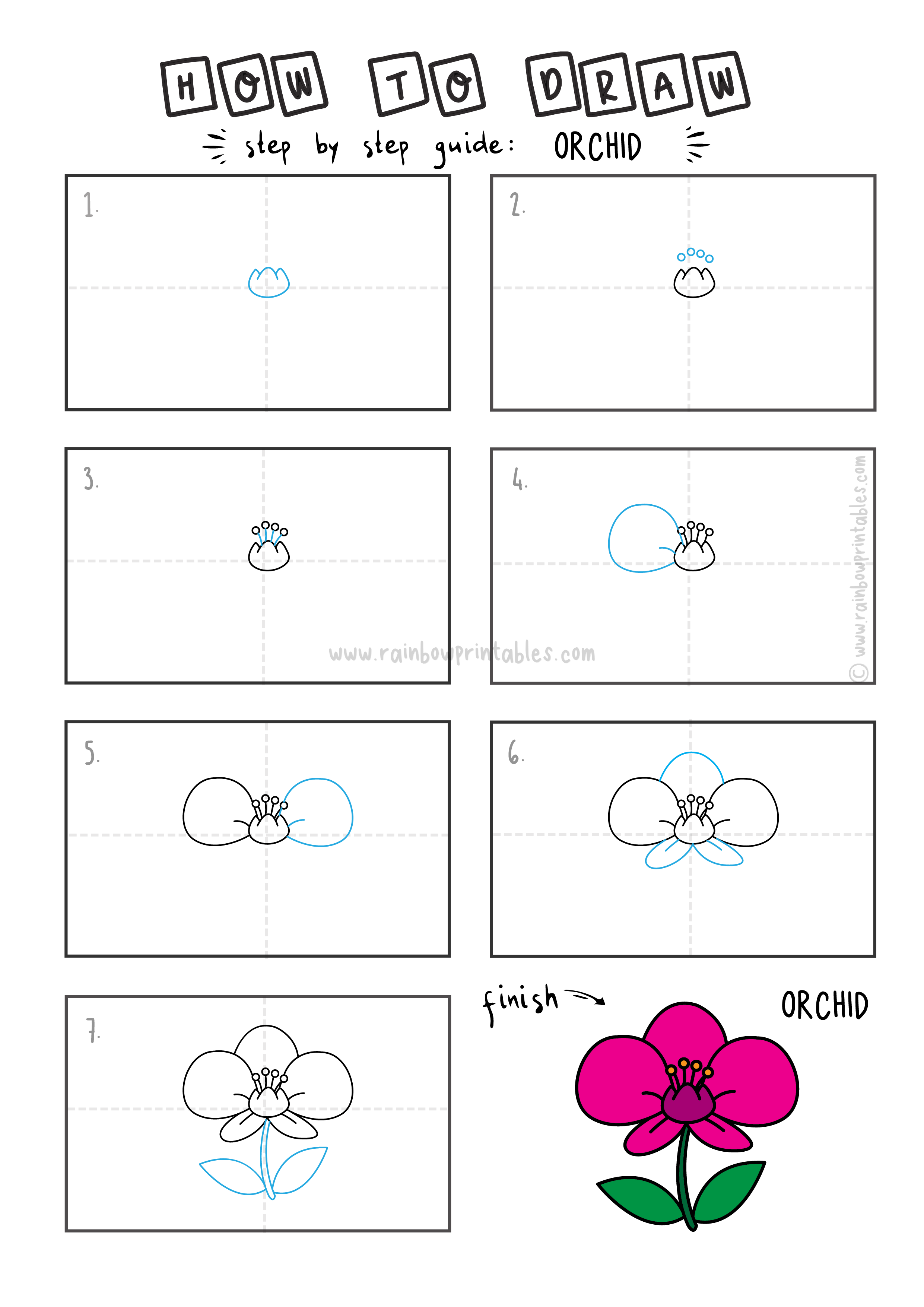 How To Draw Tutorials For Kids ORCHID FLOWER ANIMAL Step by step for kids easy simple guide