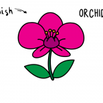 How To Draw a Beautiful Orchid - Beautiful Flower Easy Drawing Guides