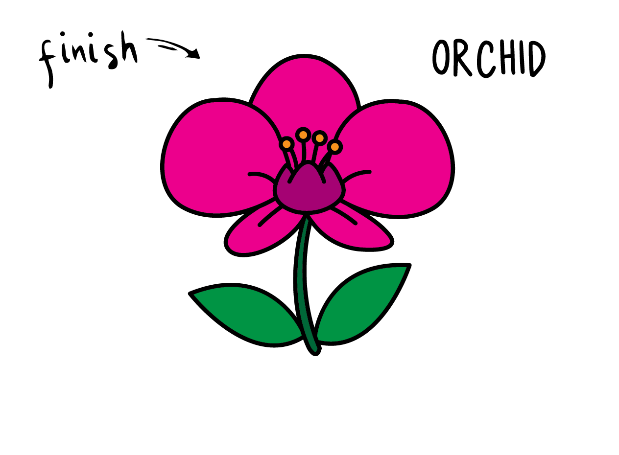 How To Draw Tutorials For Kids ORCHID FLOWER Step by step for kids easy simple guide FINAL