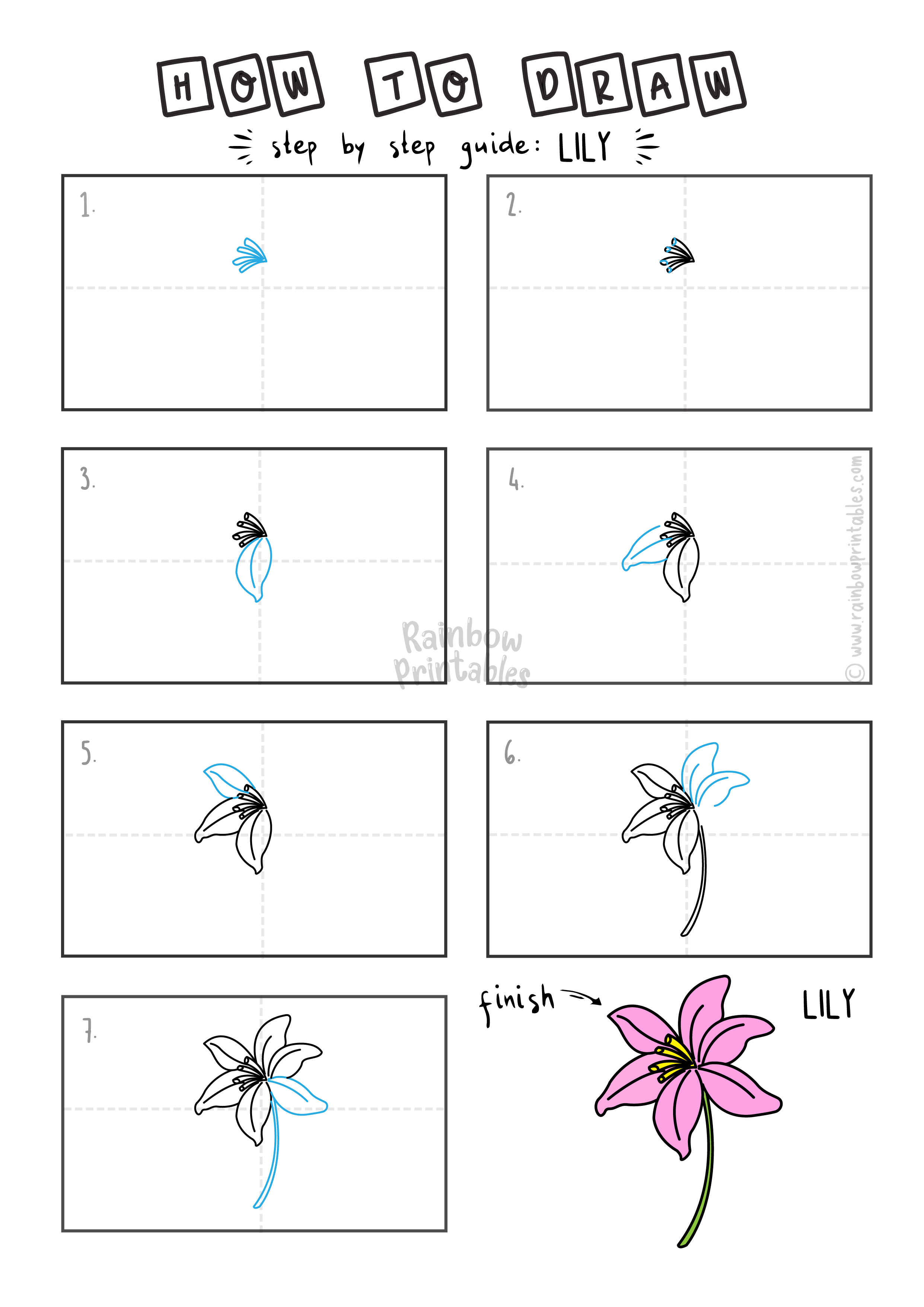 How To Draw a LILY FLOWER Step By Step Easy Simple Drawing Guide for Kids