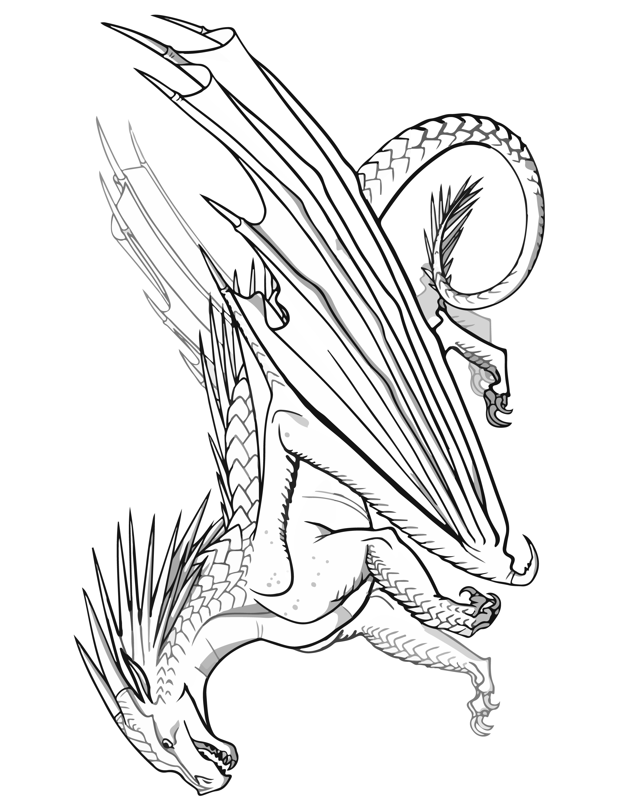 ICEWING Dragon Coloring Page Transparent Wings of Fire Coloring SHEET Pyrrhian Dragon Tribe