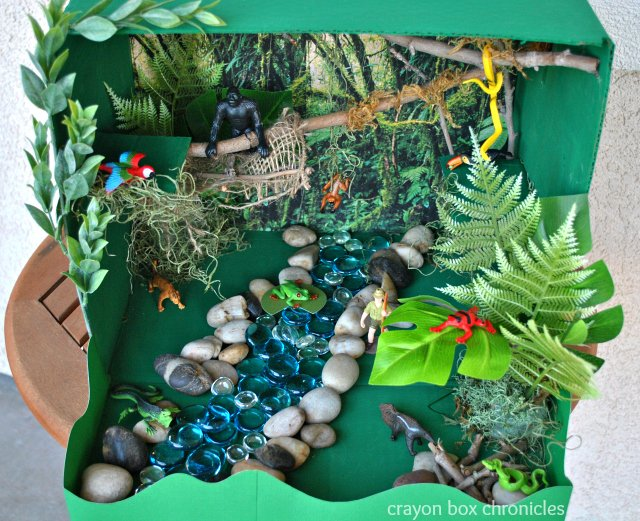 Mini-Rainforest Diorama Idea