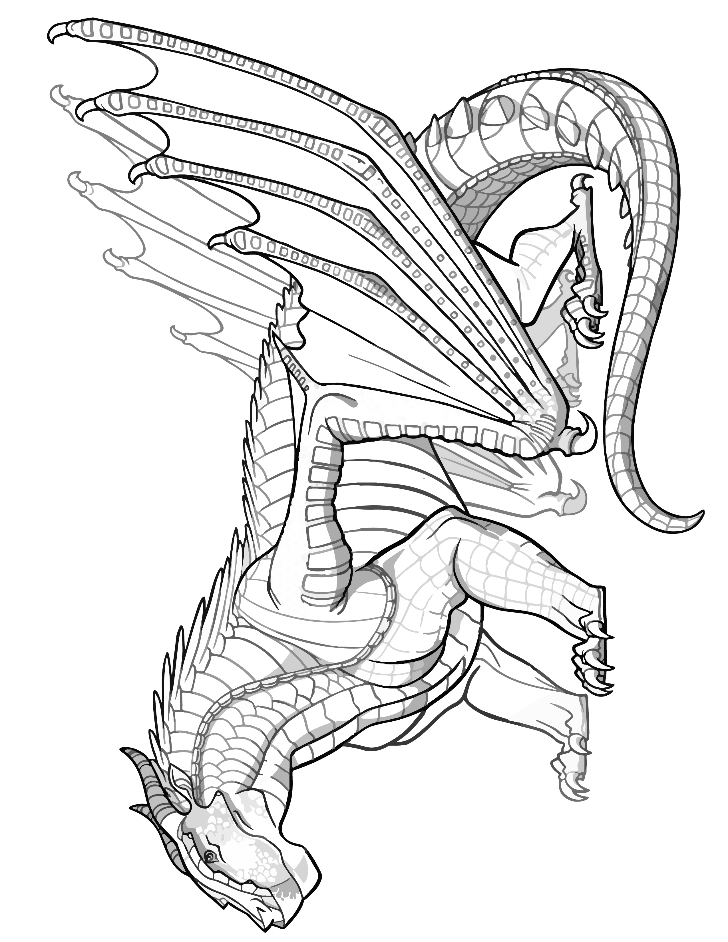 MUDWING DRAGON Coloring Page Transparent Wings of Fire Coloring SHEET Pyrrhian Dragon Tribe