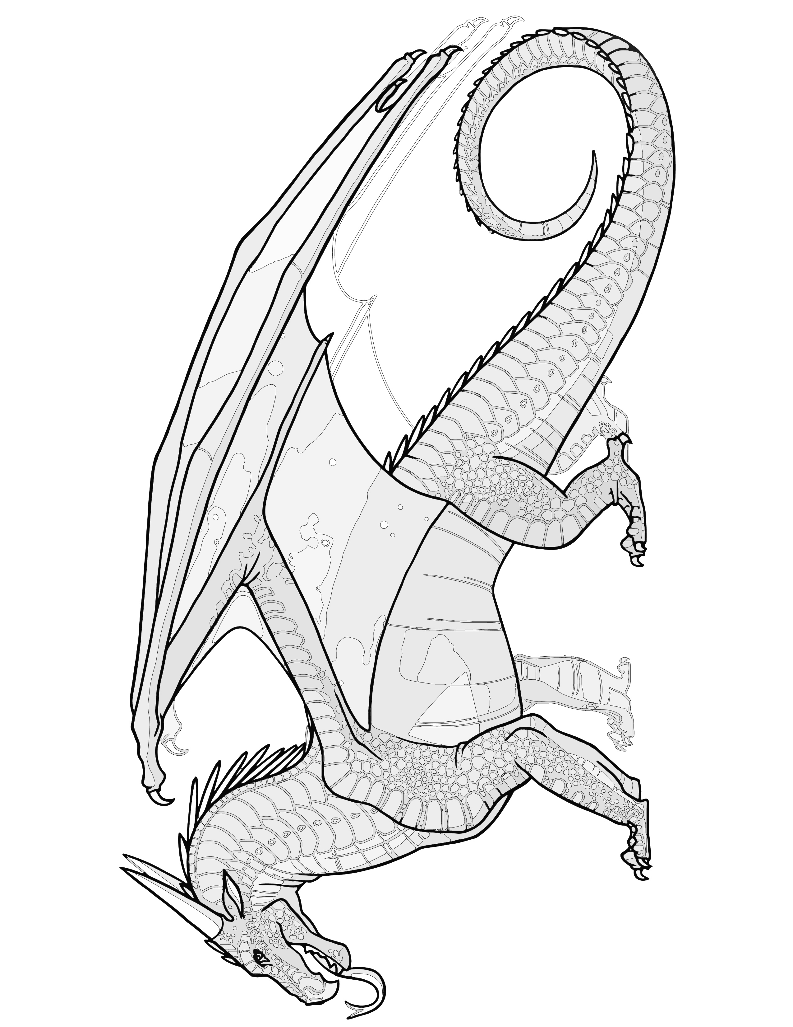 NIGHT Dragon Coloring Page Transparent Wings of Fire Coloring SHEET Pyrrhian Dragon Tribe