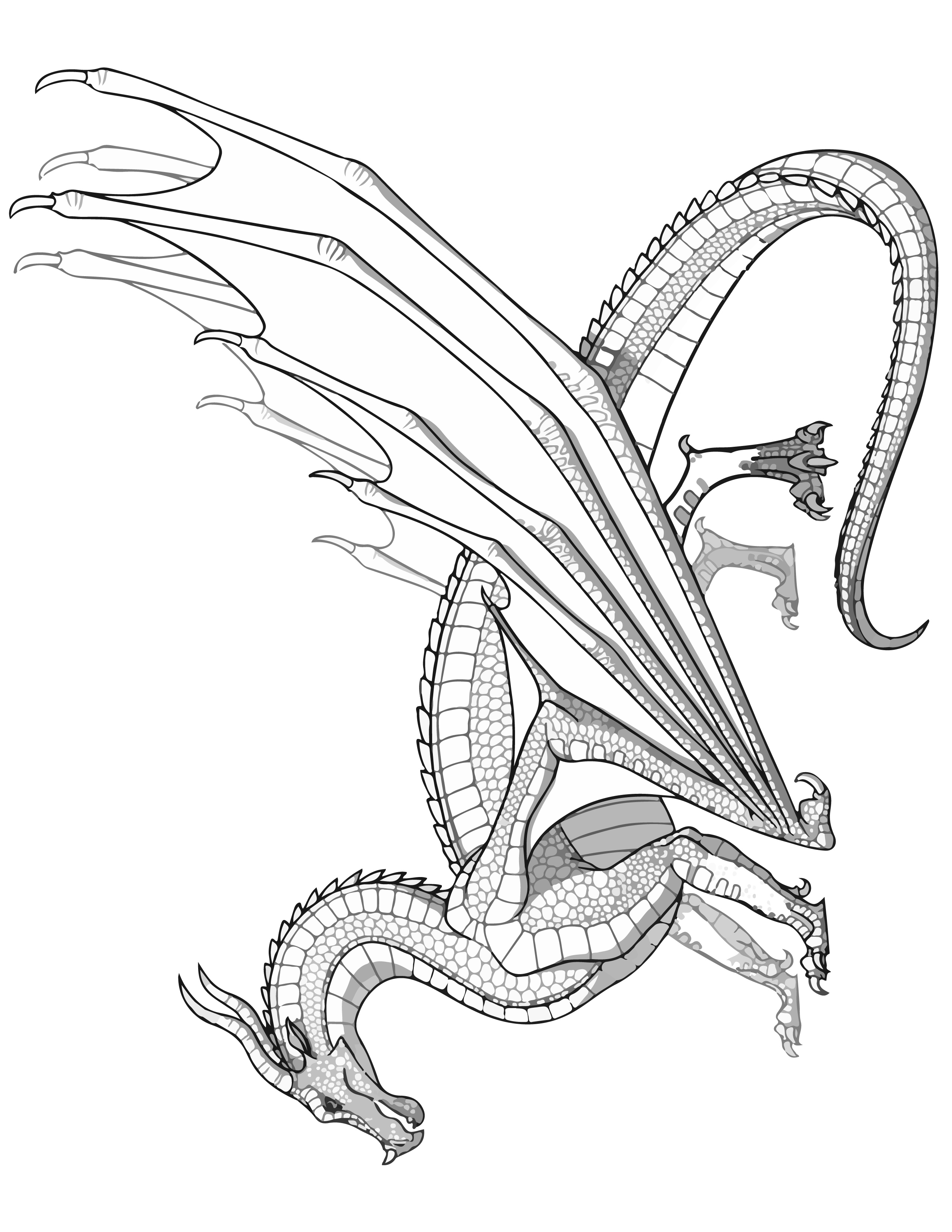 SKYWING Dragon Coloring Page Transparent Wings of Fire Coloring SHEET Pyrrhian Dragon Tribe