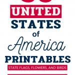50 US States Series Alabama & Alaska State Alabama & Alaska State Flag, State Birds, State Flower Printables for Kids