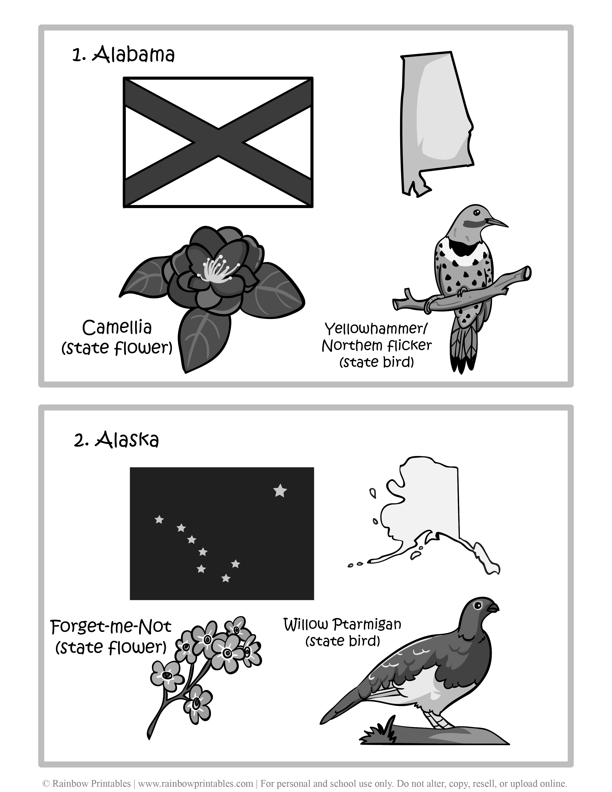 Alabama, Alaska, 50 US State Flag, State Bird, State Flower, United States of America - American States Geography Worksheet Class Lesson Printables Flashcards Black White