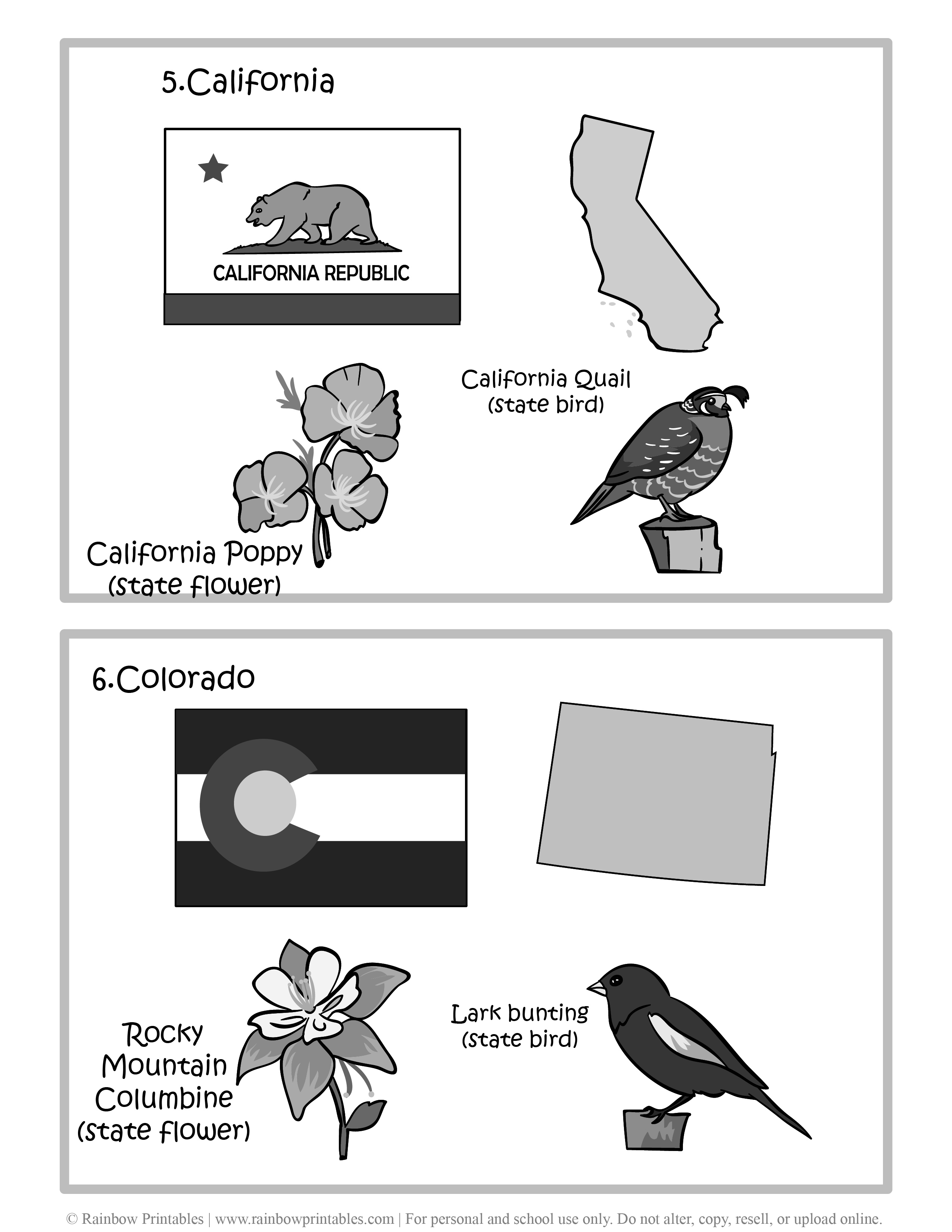 California, Colorado, 50 US State Flag, State Bird, State Flower, United States of America - American States Geography Worksheet Class Lesson Printables Flashcards Black White