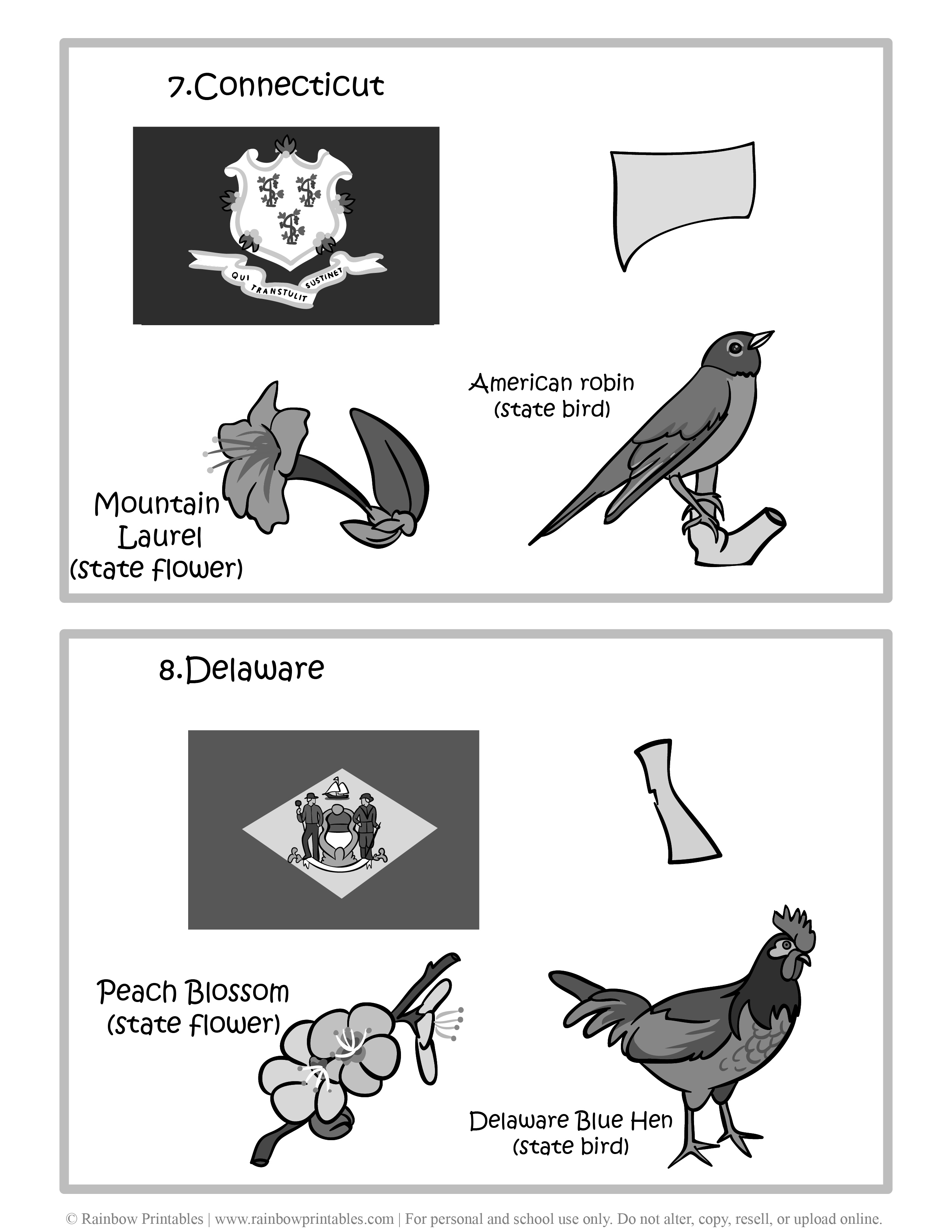 Connecticut, Delaware, 50 US State Flag, State Bird, State Flower, United States of America - American States Geography Worksheet Class Lesson Printables Flashcards Black White