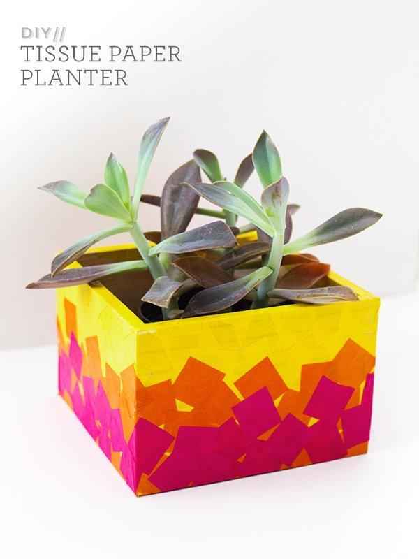 Easy Tissue Paper Planter Box