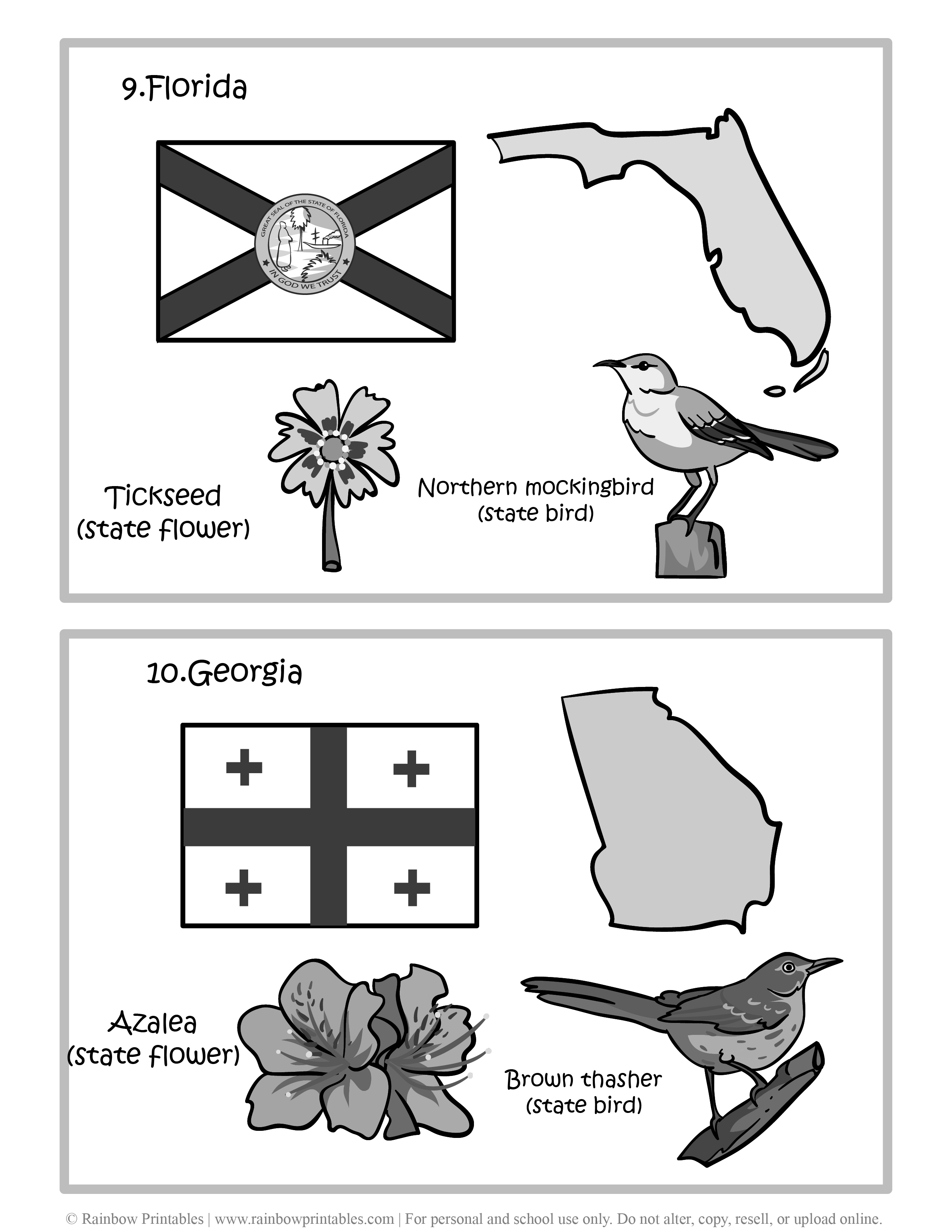 Florida, Georgia, 50 US State Flag, State Bird, State Flower, United States of America - American States Geography Worksheet Class Lesson Printables Flashcards Black White