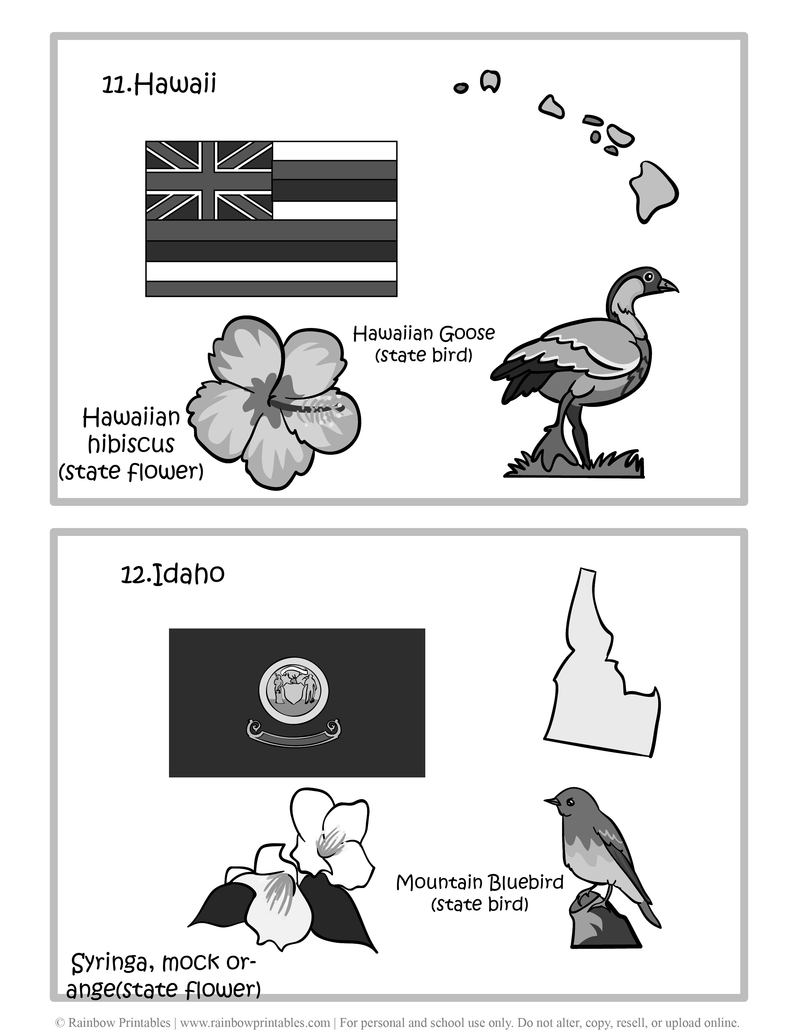 Hawaii, IDAHO, 50 US State Flag, State Bird, State Flower, United States of America - American States Geography Worksheet Class Lesson Printables Flashcards Black White