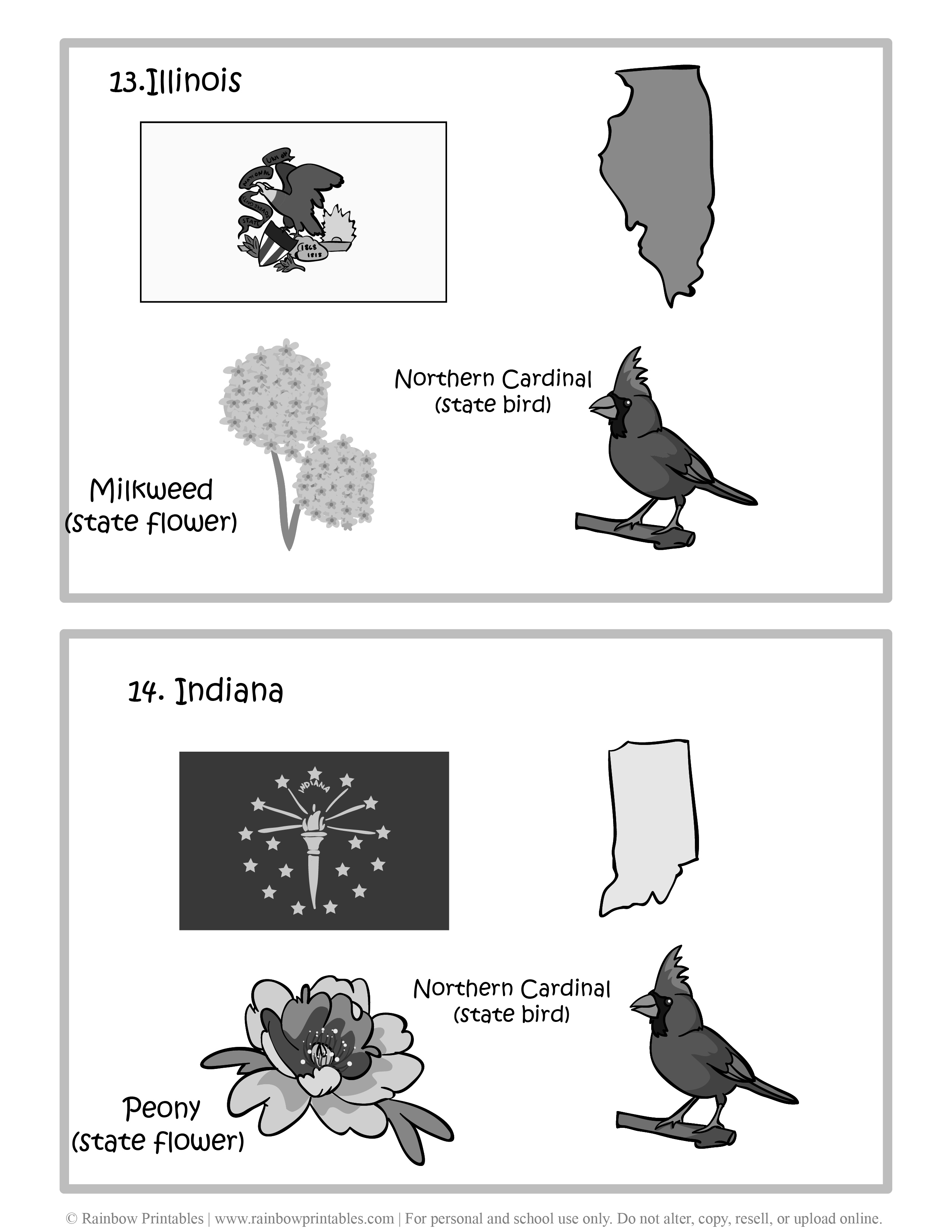 Illinois, Indiana, 50 US State Flag, State Bird, State Flower, United States of America - American States Geography Worksheet Class Lesson Printables Flashcards Black White