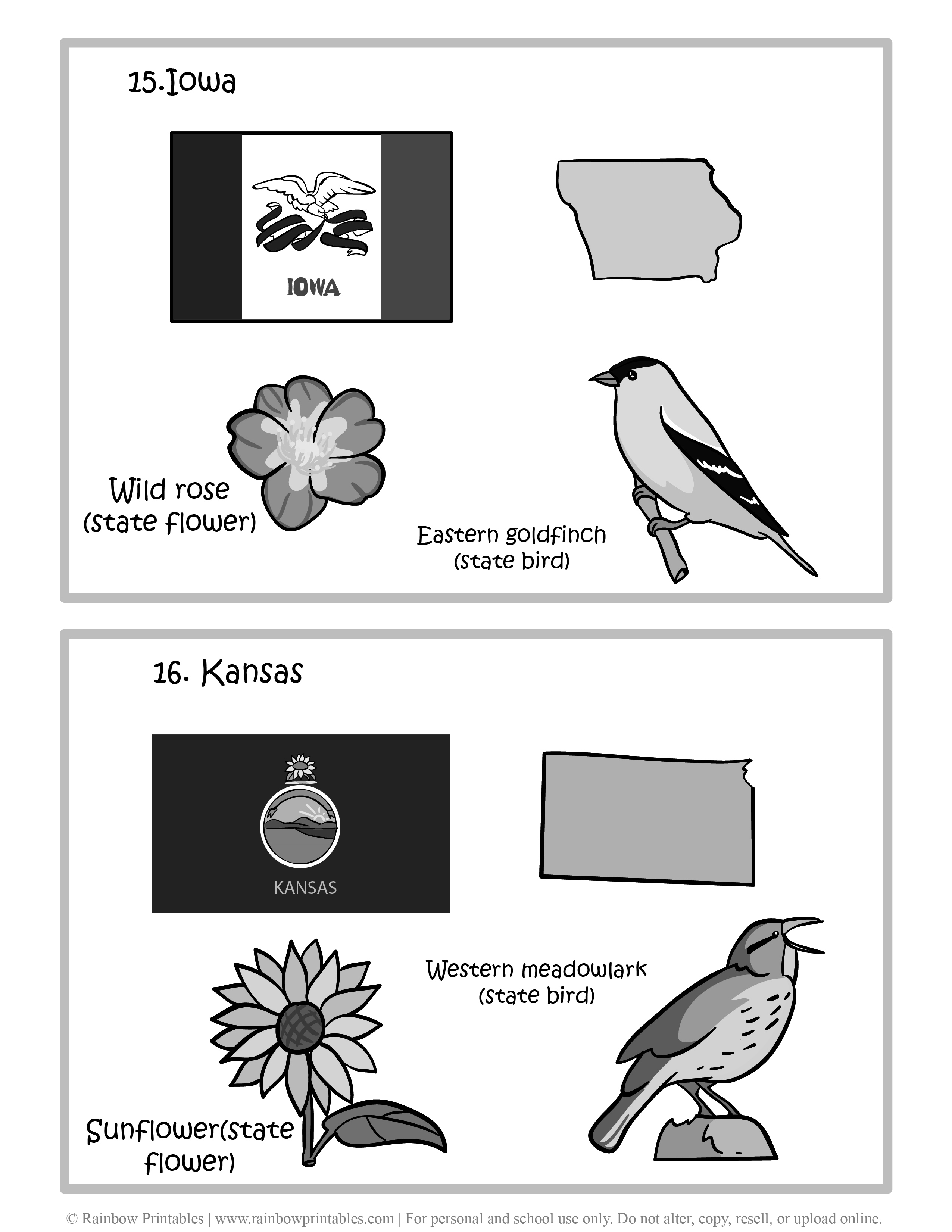 Iowa, Kansas, 50 US State Flag, State Bird, State Flower, United States of America - American States Geography Worksheet Class Lesson Printables Flashcards Black White