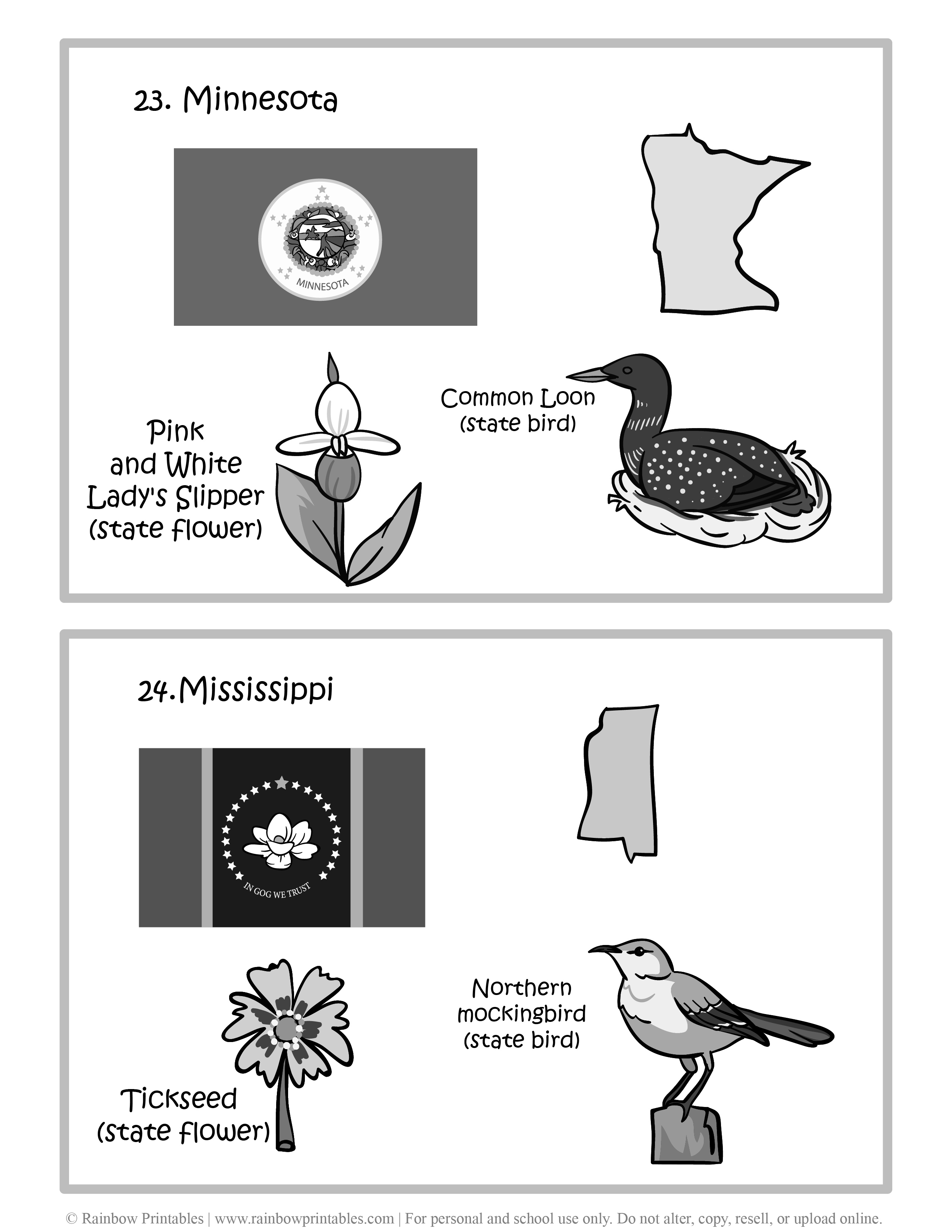 Minnesota, Mississippi, 50 US State Flag, State Bird, State Flower, United States of America - American States Geography Worksheet Class Lesson Printables Flashcards Black White