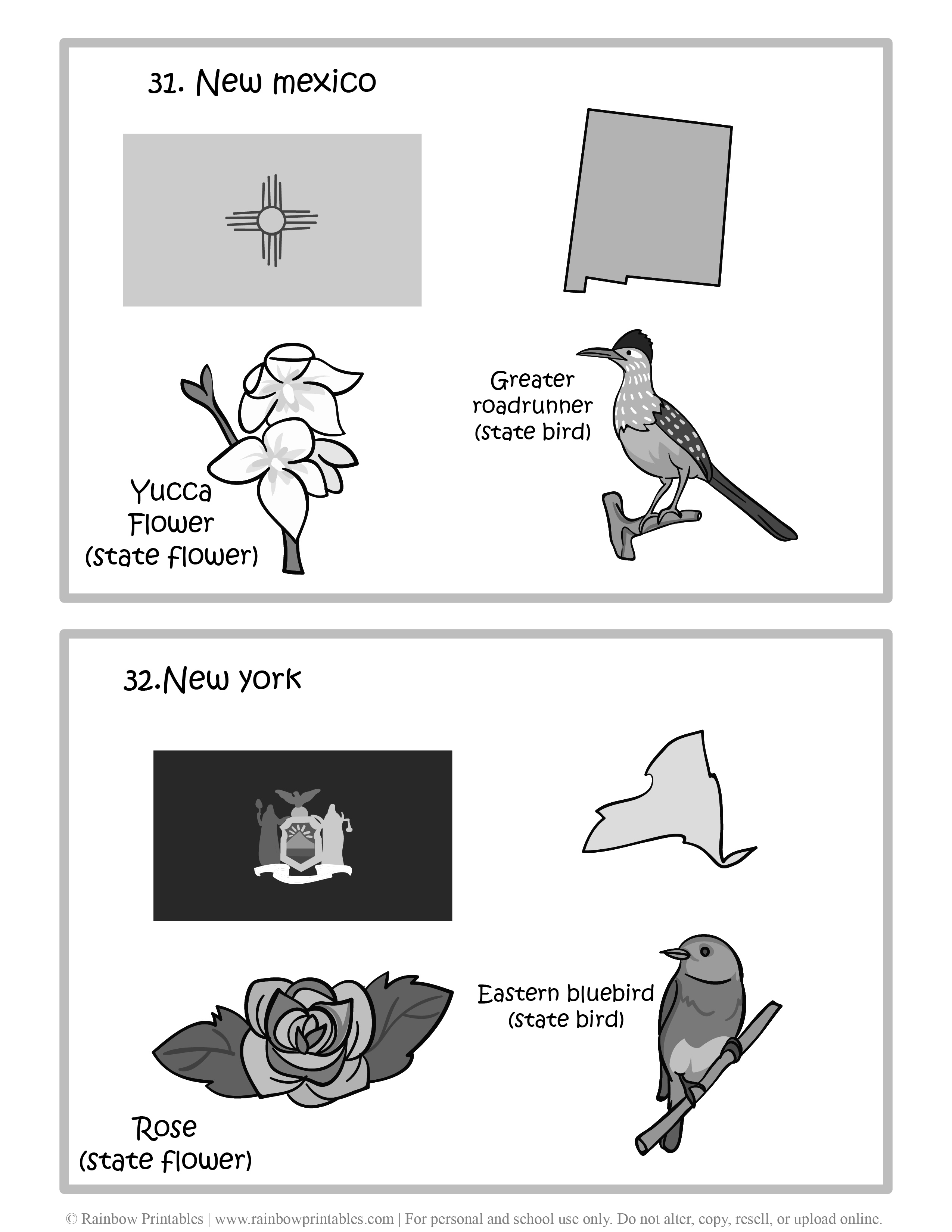 New Mexico, New York, 50 US State Flag, State Bird, State Flower, United States of America - American States Geography Worksheet Class Lesson Printables Flashcards Black White