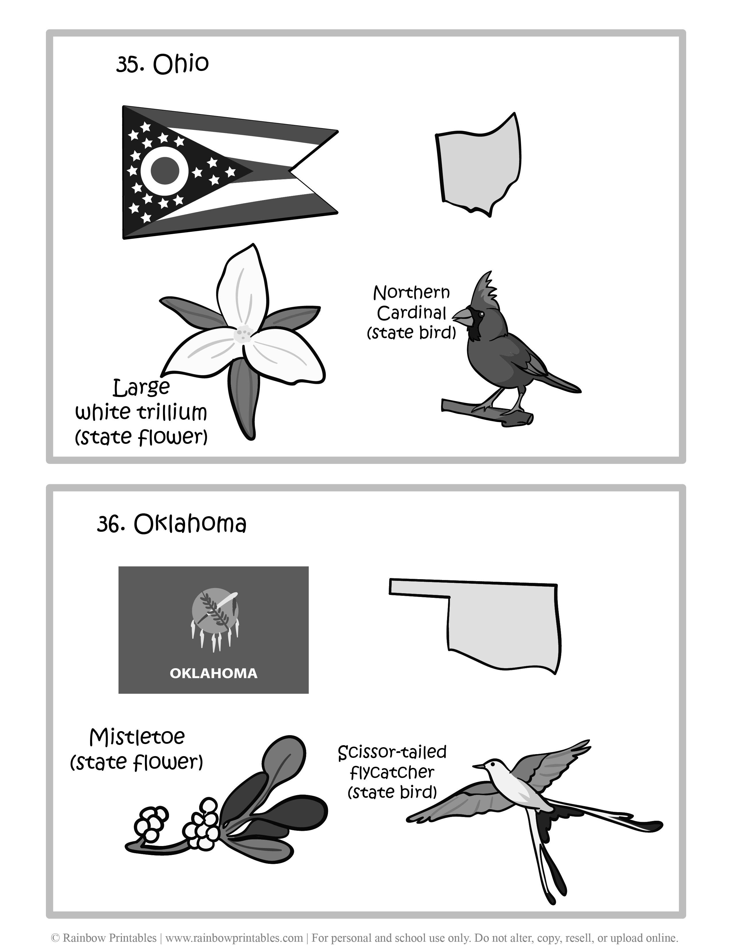 Ohio, Oklahoma, 50 US State Flag, State Bird, State Flower, United States of America - American States Geography Worksheet Class Lesson Printables Flashcards Black White