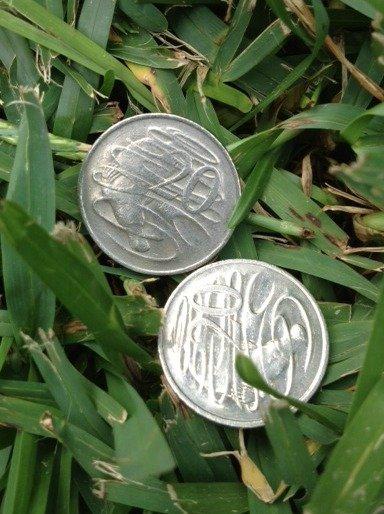 Identical Coins